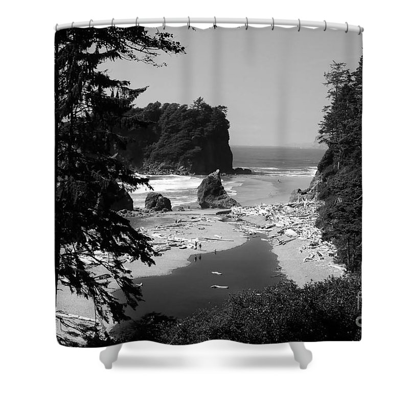 Cove Shower Curtain featuring the photograph Wild Cove by David Lee Thompson