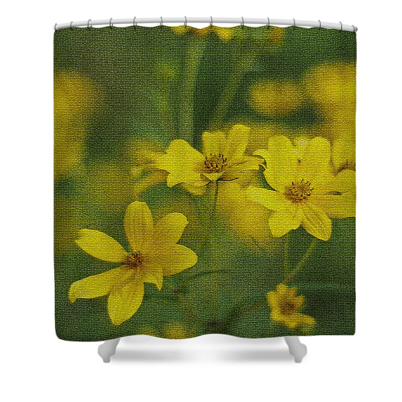 Wild Shower Curtain featuring the photograph Wild Daisies by Leanne Lei