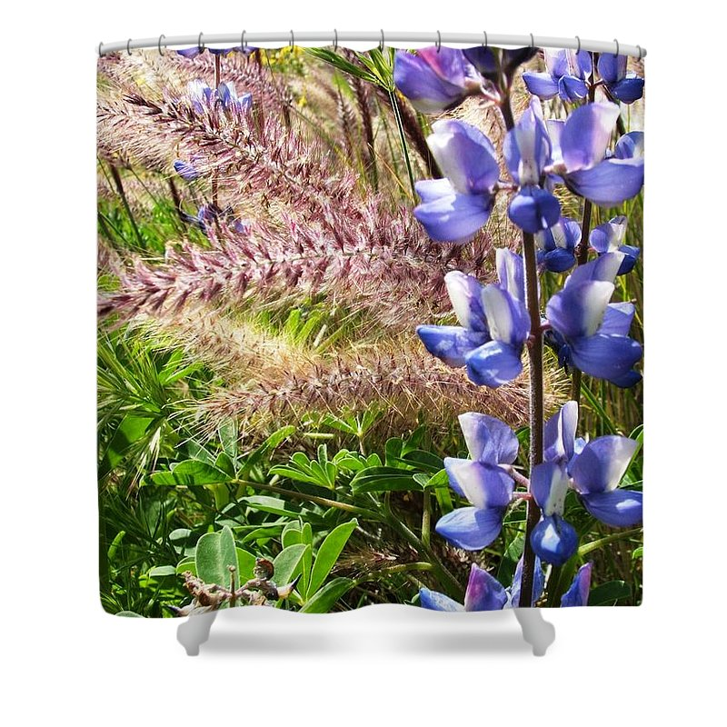Flower Shower Curtain featuring the photograph Wild Flower by Shari Chavira