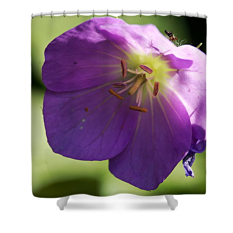Geranium Shower Curtain featuring the photograph Wild Geranium by Larry Ricker