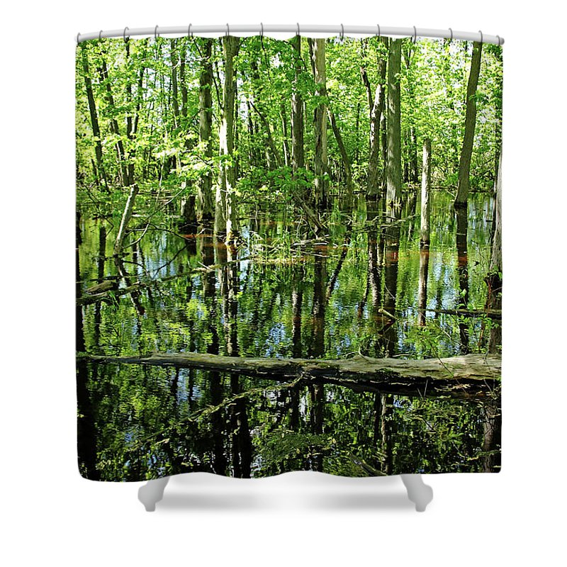 Guelph Shower Curtain featuring the photograph Wild Goose Woods Pond Iv by Debbie Oppermann