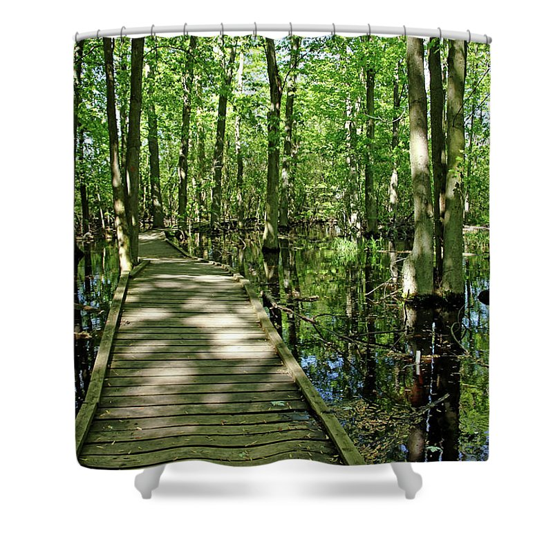 Guelph Shower Curtain featuring the photograph Wild Goose Woods Pond Vi by Debbie Oppermann