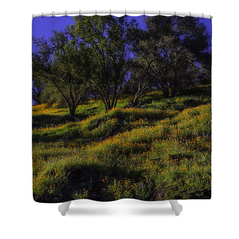 Hill Side Shower Curtain featuring the photograph Wild Poppies by Garry Gay