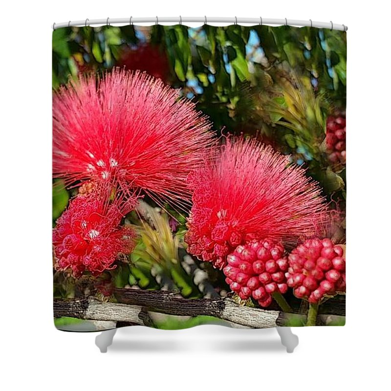 Wild Flowers Shower Curtain featuring the photograph Wild, Red Fluffy Flowers by Zenya Zenyaris