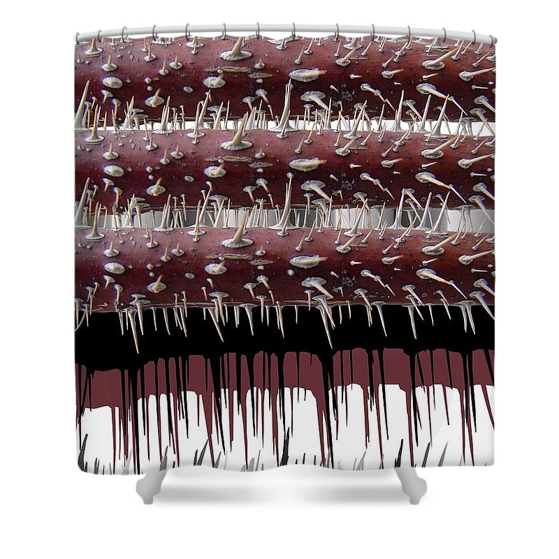 Wild Rose Shower Curtain featuring the digital art Wild Rose by Ron Bissett