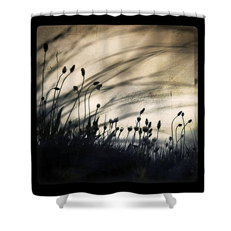 Grass Mood Triptych Wild Art Fineart Dorit Nature Shower Curtain featuring the photograph Wild Things by Dorit Fuhg