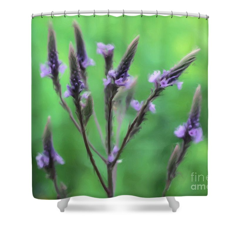 Flower Shower Curtain featuring the painting Wild Vervain by Smilin Eyes Treasures