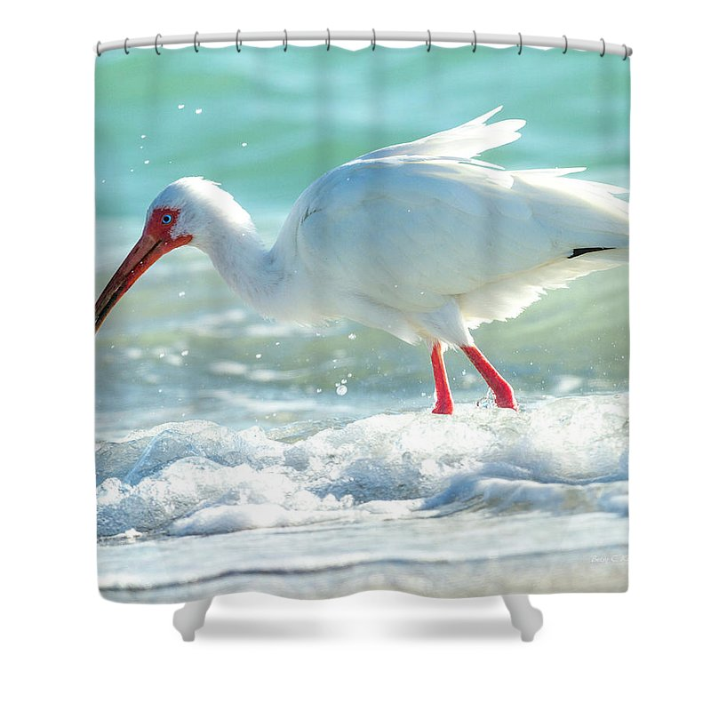 Ibis Shower Curtain featuring the photograph Wild Winds by Betsy Knapp