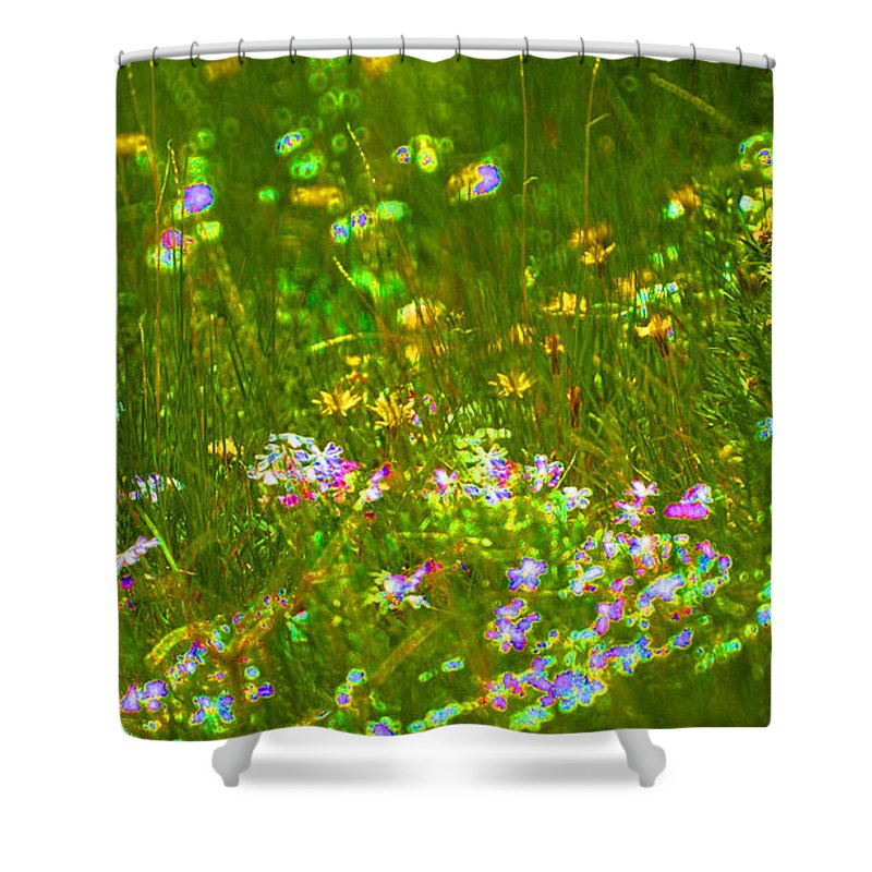 Wildflower Shower Curtain featuring the photograph Wildflower Field by Heather Coen