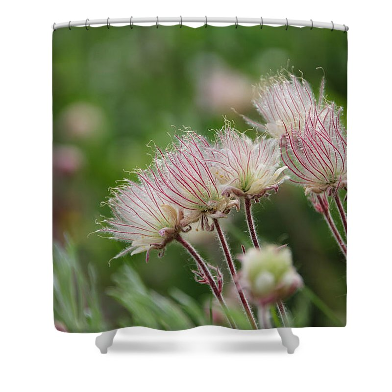 Summit County Shower Curtain featuring the photograph Wildflowers by Becky Canterbury