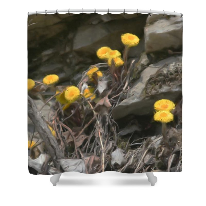 Flower Shower Curtain featuring the painting Wildflowers In Rocks by Smilin Eyes Treasures