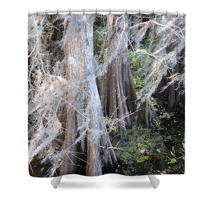 Wind Through Cypresses Shower Curtain featuring the photograph Wind Through The Cypress Trees by Carol Groenen