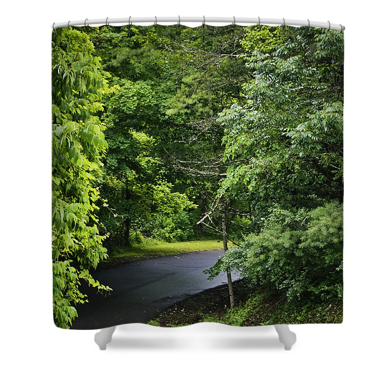 Rain Shower Curtain featuring the photograph Winding Road Bluestone State Park West Virginia by Teresa Mucha