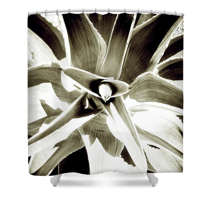 Florida Shower Curtain featuring the photograph Windmill Extreme by Chris Andruskiewicz
