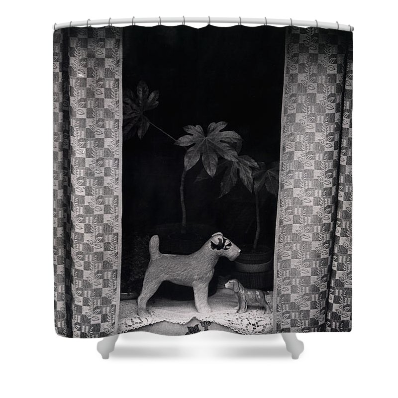 Photograph Shower Curtain featuring the photograph Window Scene by Charles Stuart