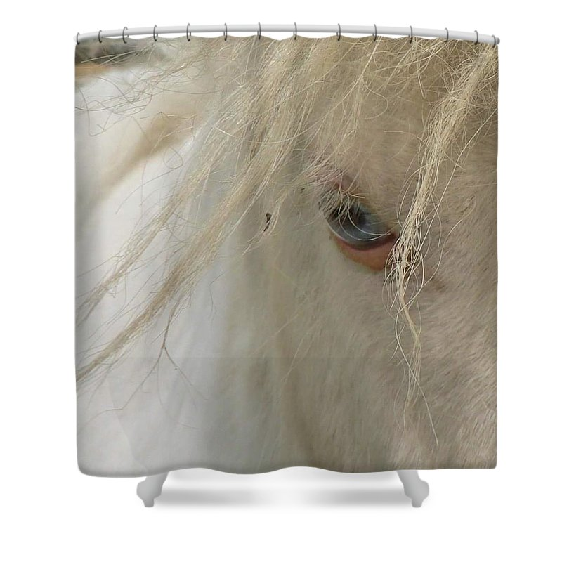 Horse. Eyes Shower Curtain featuring the photograph Window To The Soul by Melissa Haney