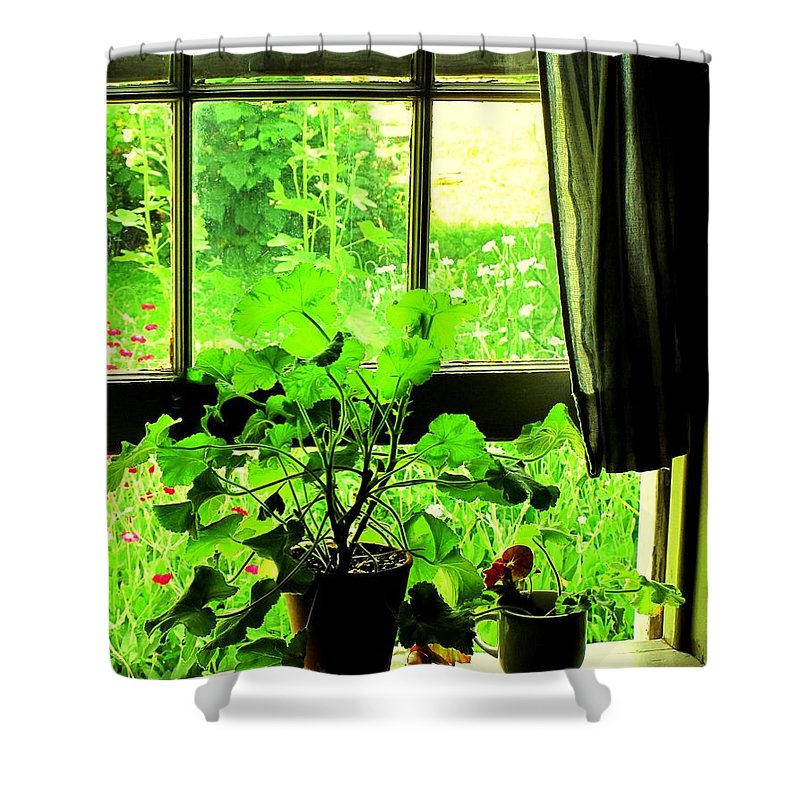 Pioneer Shower Curtain featuring the photograph Window To The World by Ian MacDonald