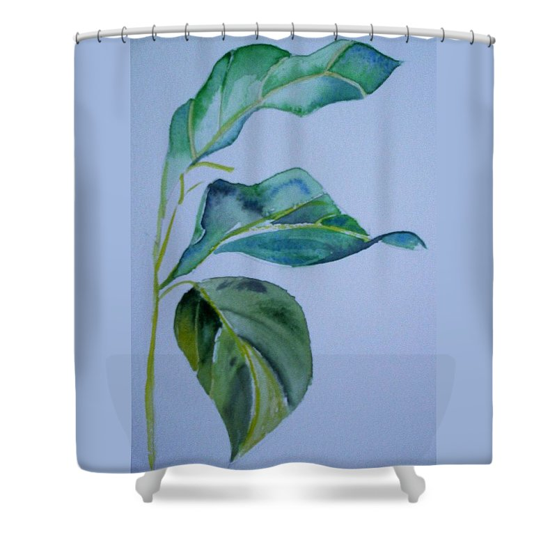 Nature Shower Curtain featuring the painting Window View by Suzanne Udell Levinger