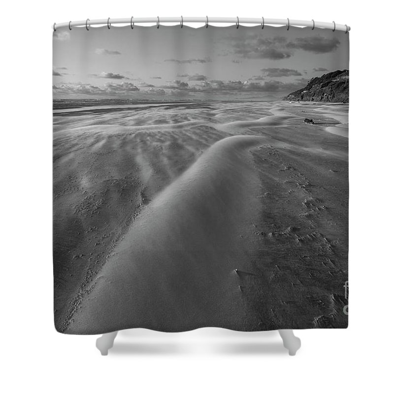 Windy Shower Curtain featuring the photograph Windy Day by Masako Metz