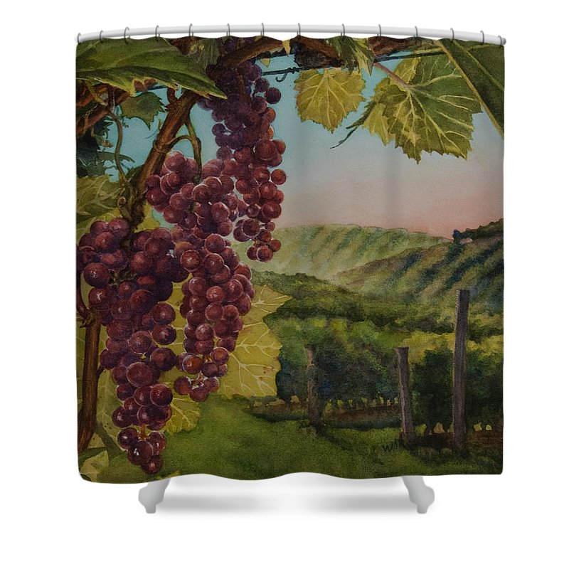 Wine Shower Curtain featuring the painting Wine Vineyard by Heidi E Nelson