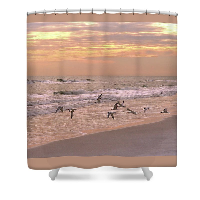 Beach Shower Curtain featuring the photograph Wings Of Dawn by Marie Hicks