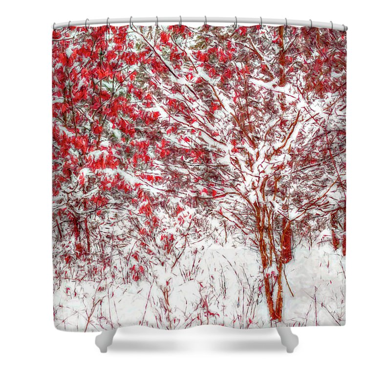 Art Shower Curtain featuring the digital art Winter Color by Randy Steele