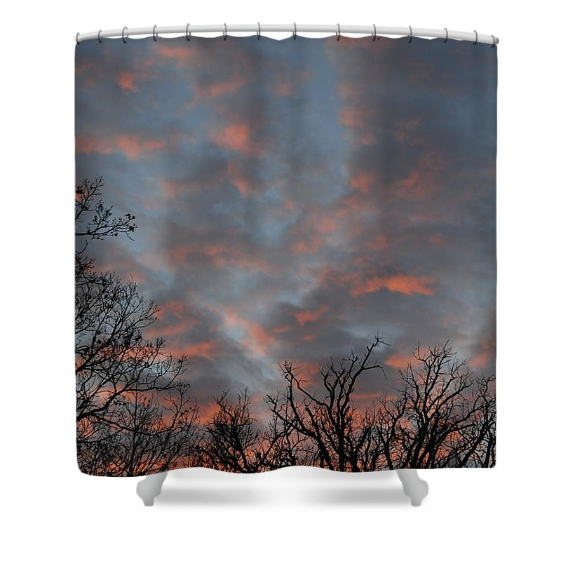 Winter Dusk Shower Curtain featuring the photograph Winter Dusk by David Jacobi