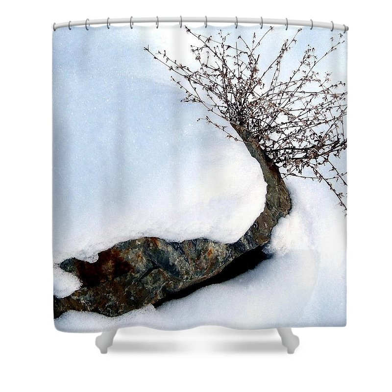 Winter Shower Curtain featuring the photograph Winter Finery by Will Borden