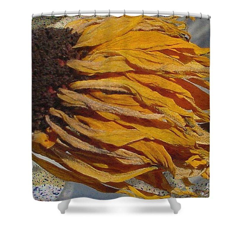 Digital Art Shower Curtain featuring the digital art Winter Flower by Ron Bissett