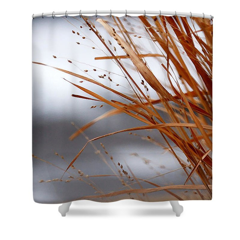 Grass Shower Curtain featuring the photograph Winter Grass - 2 by Linda Shafer