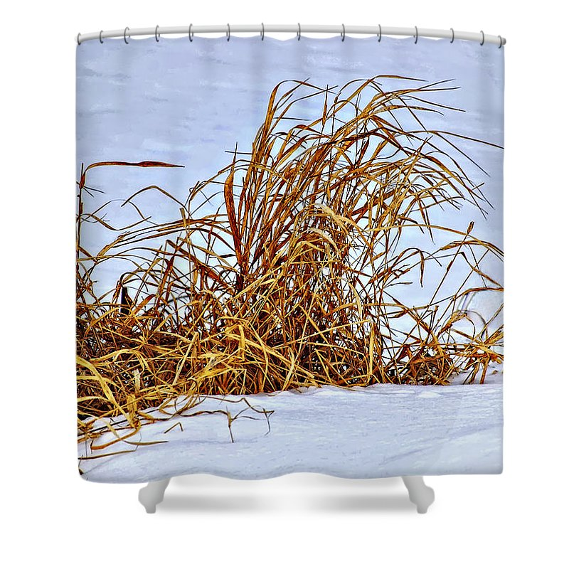 Grasses Shower Curtain featuring the photograph Winter Grasses by Steve Harrington
