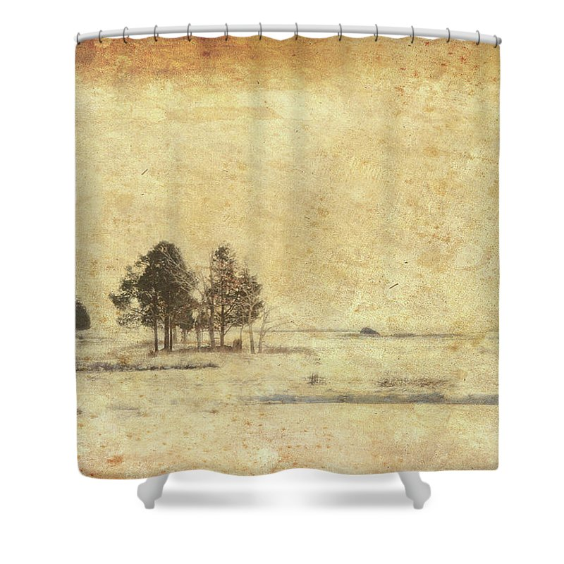 Cape Cod Shower Curtain featuring the photograph Winter Marsh by Douglas W Bradshaw