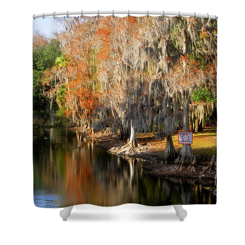 Hillsborough River Florida Shower Curtain featuring the photograph Winter On The Hillsborough by David Lee Thompson