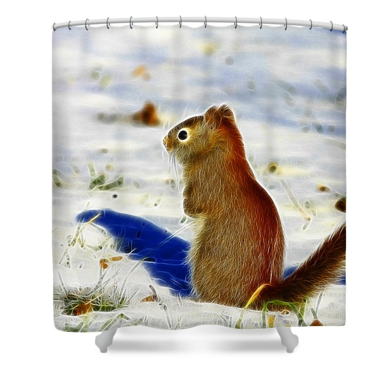 Red Shower Curtain featuring the photograph Winter Red by Deborah Benoit