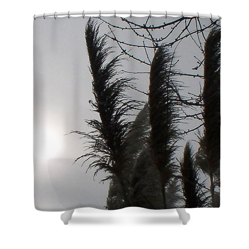 Winter Shower Curtain featuring the photograph Winter Sun by Valerie Josi