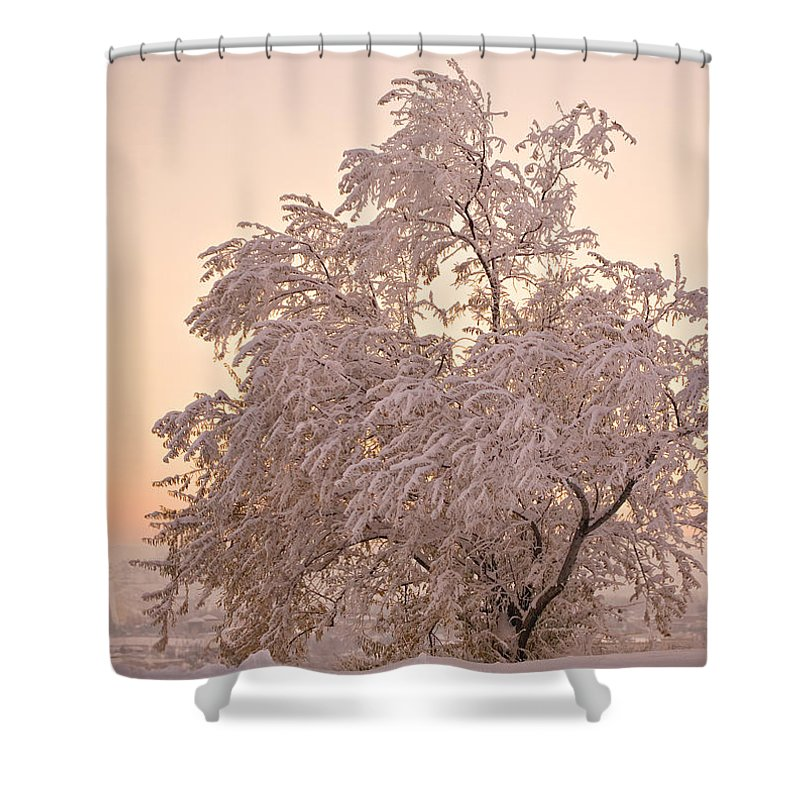 Winter Shower Curtain featuring the photograph Winter Sunset by Marilyn Hunt