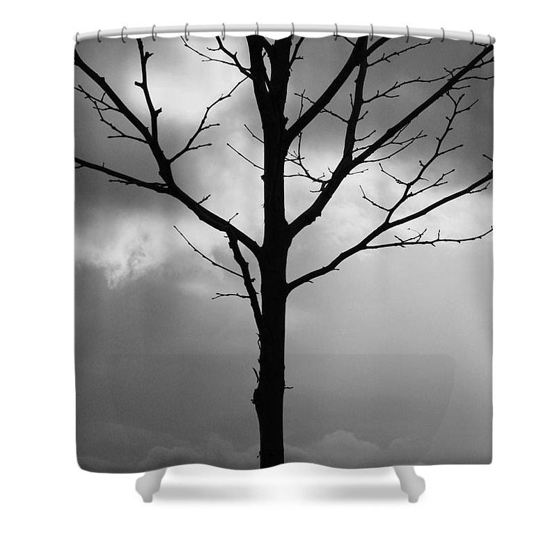 Winter Tree Shower Curtain featuring the photograph Winter Tree by Carol Groenen