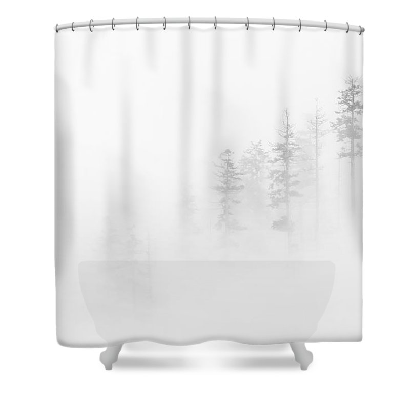 Winter Shower Curtain featuring the photograph Winter Veil by Mike Dawson