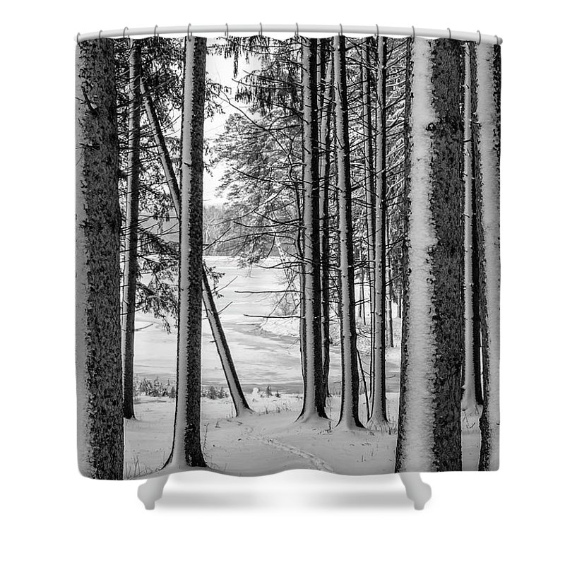 Winter Shower Curtain featuring the photograph Winter Walk by Joann Long