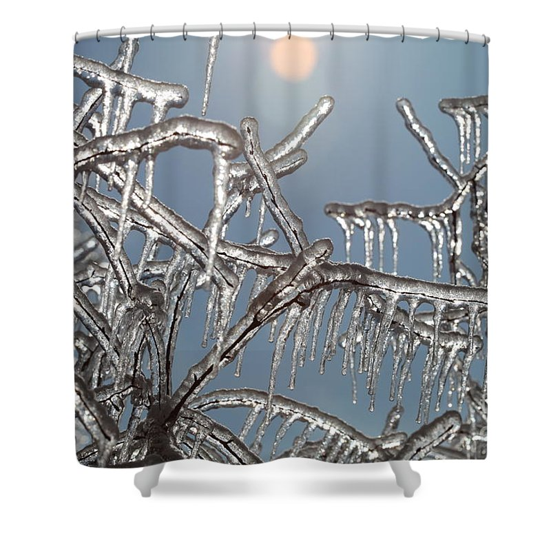 Winter Shower Curtain featuring the photograph Winter Warmth by Nadine Rippelmeyer