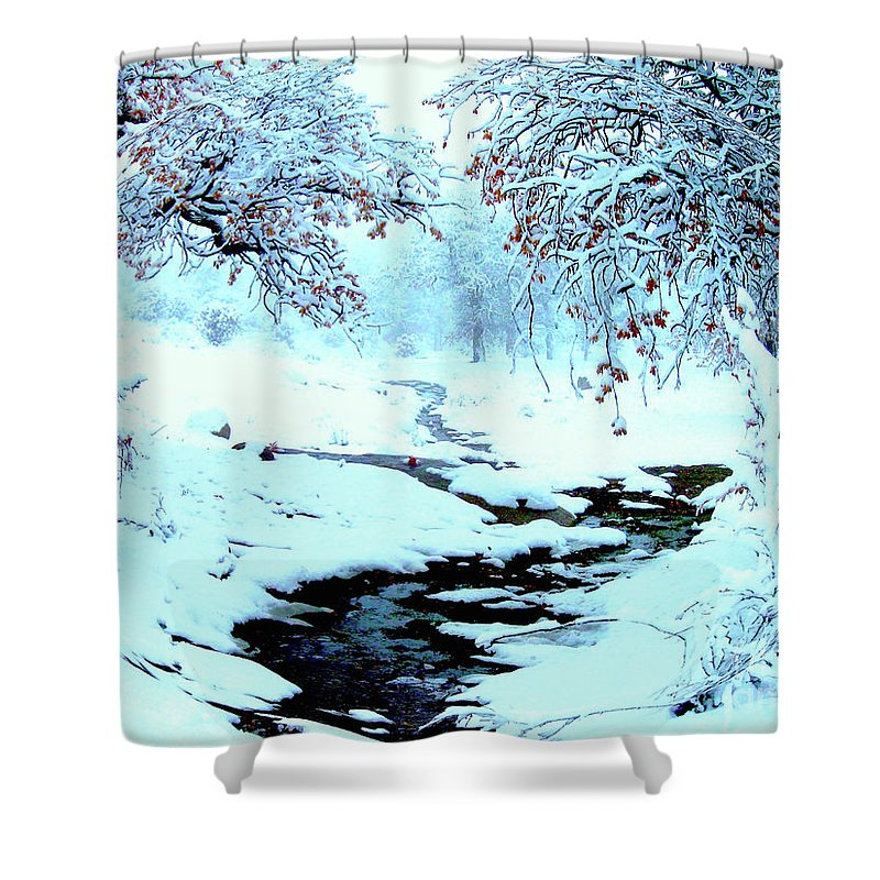 Winter Shower Curtain featuring the photograph Winter Wonder by Jerome Stumphauzer