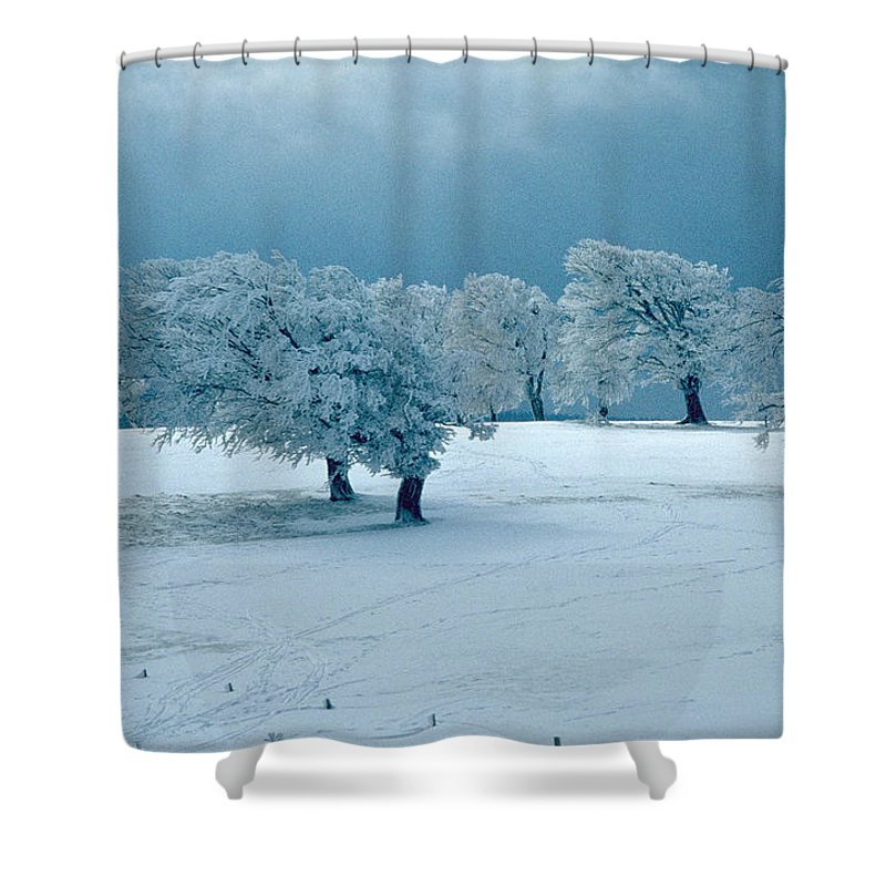 Winter Shower Curtain featuring the photograph Winter Wonderland by Flavia Westerwelle
