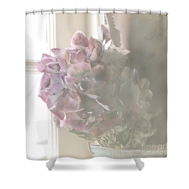 Hydrangea Shower Curtain featuring the photograph Wistful by Cindy Garber Iverson