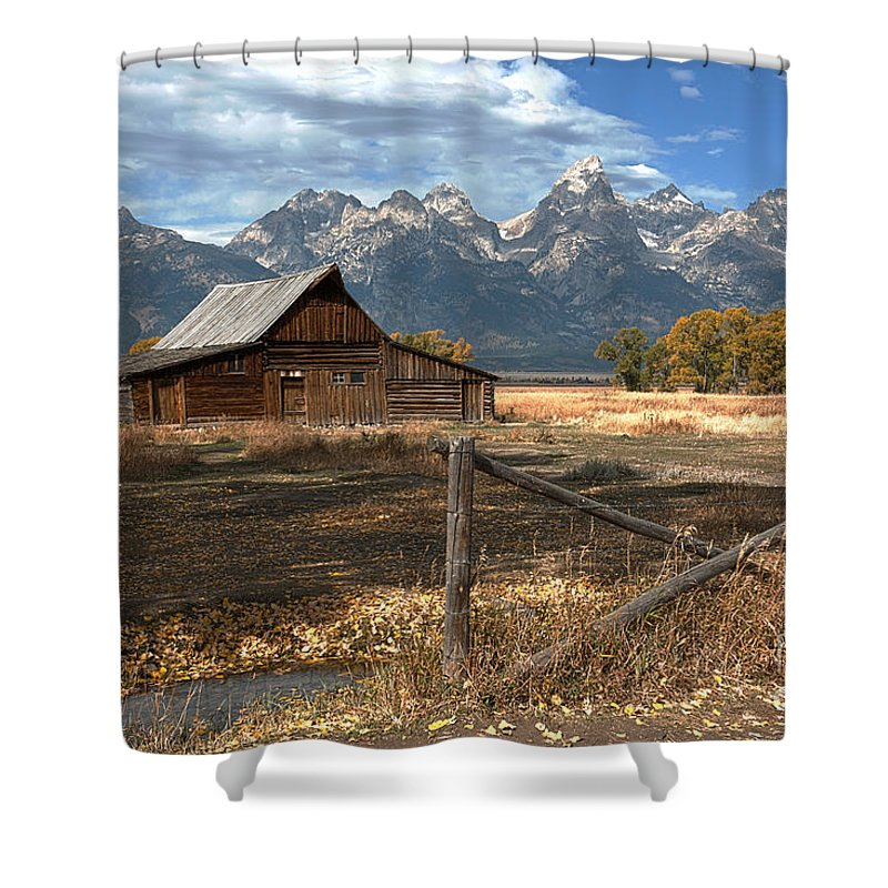 Grand Tetons Shower Curtain featuring the photograph Withstanding The Test Of Time by Sandra Bronstein