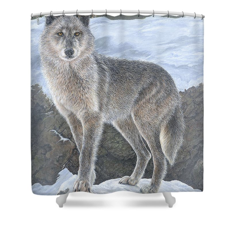 Wolf Shower Curtain featuring the painting Wolf by Edmund Price
