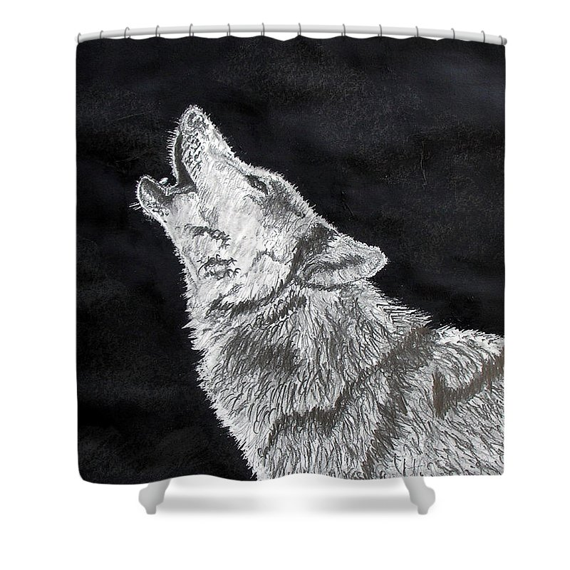Pencil Shower Curtain featuring the drawing Wolf Howl by Stan Hamilton