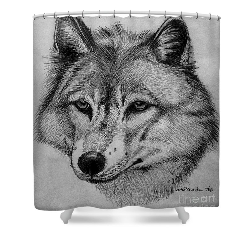 Wolf Shower Curtain featuring the drawing Wolf Sketch by Nick Gustafson