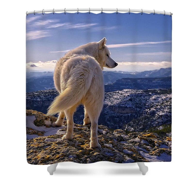 Wolf Shower Curtain featuring the digital art Wolf by Zia Low