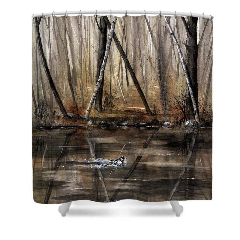 Nature Shower Curtain featuring the painting Wood Duck On Pond by Mary Tuomi