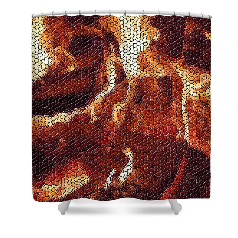 Wood Shower Curtain featuring the digital art Wood Fire Mosaic by Tim Allen